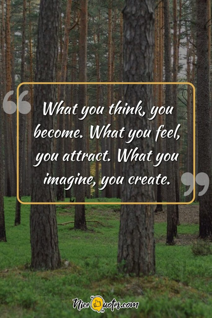 What you think, you become. What you feel, you attract