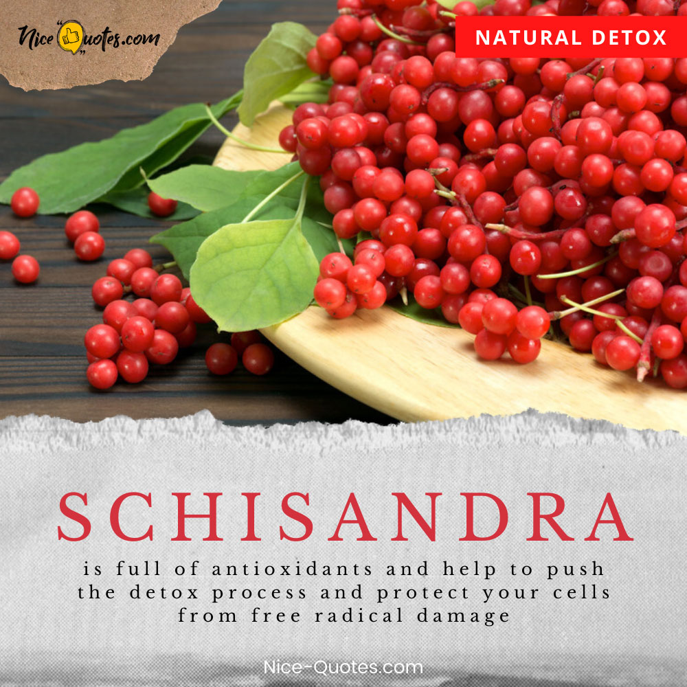 Schisandra is full of antioxidants and helps protect your cells from free radical damage