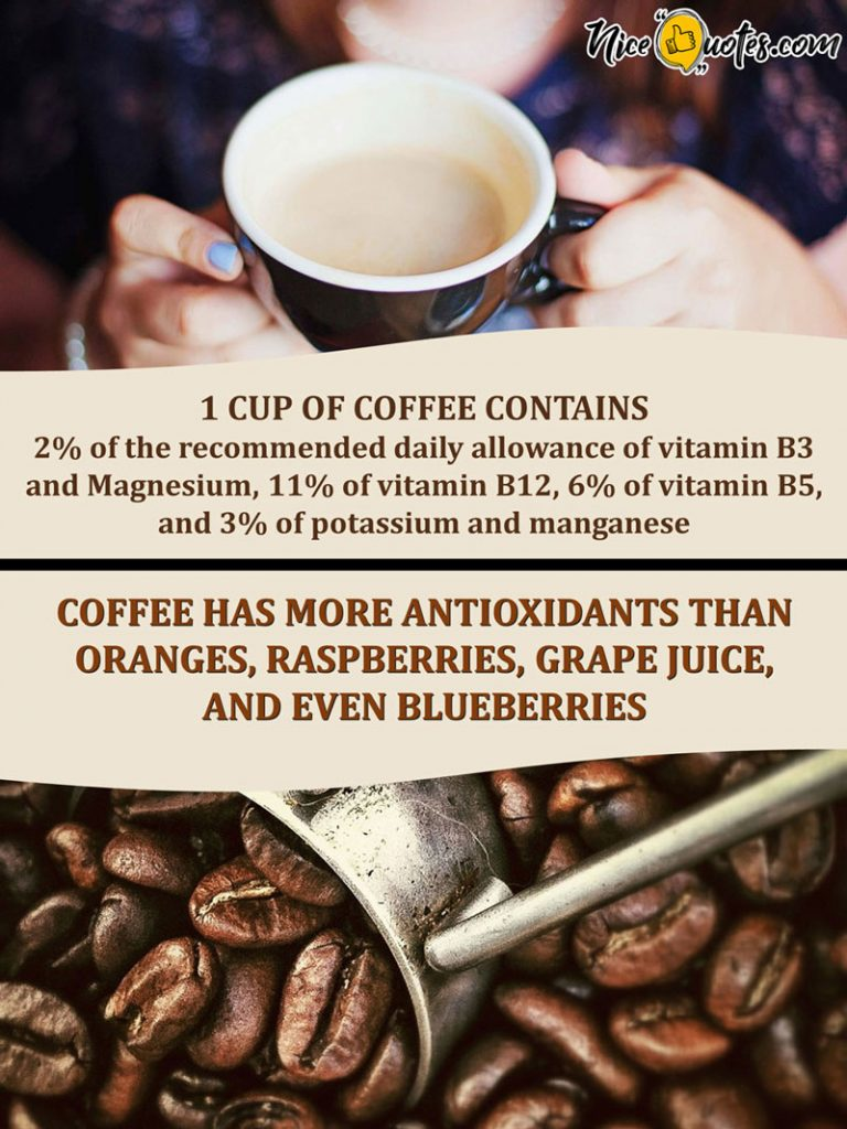 coffee-has-more-antioxidants
